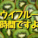 キウイフルーツ 便秘解消 いつ食べる