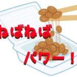 納豆 ネバネバ 栄養